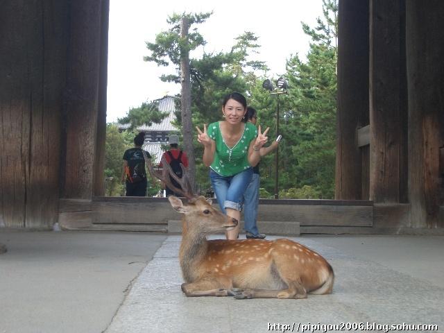 世界文化遗产,东大寺