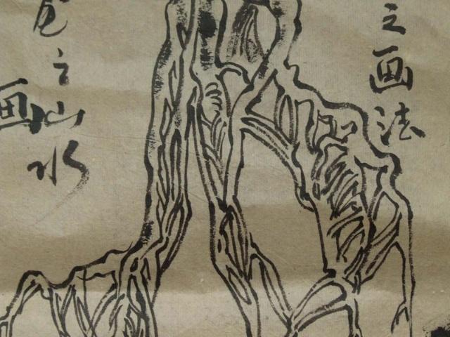 树根的画法