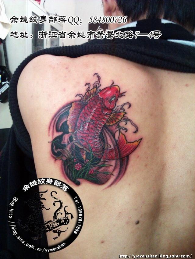 余姚纹身部落2011作品—鲤鱼