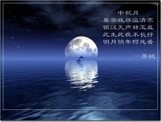 《中秋月》苏轼 赏析