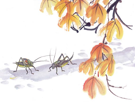 昆虫拟人简笔画大全集