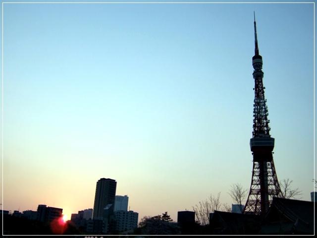 夕阳下,如此和谐宁静的东京塔