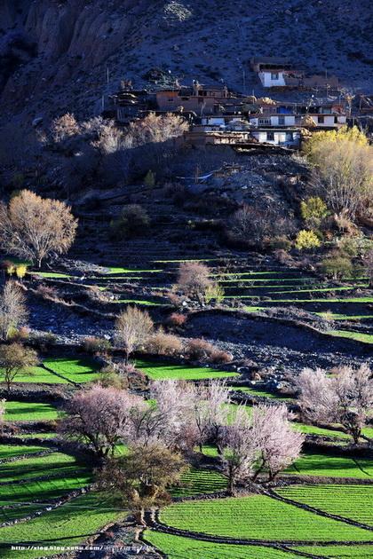 三江并流自然景观,位于云南省滇西北青藏高原南延的横断山脉纵谷地区
