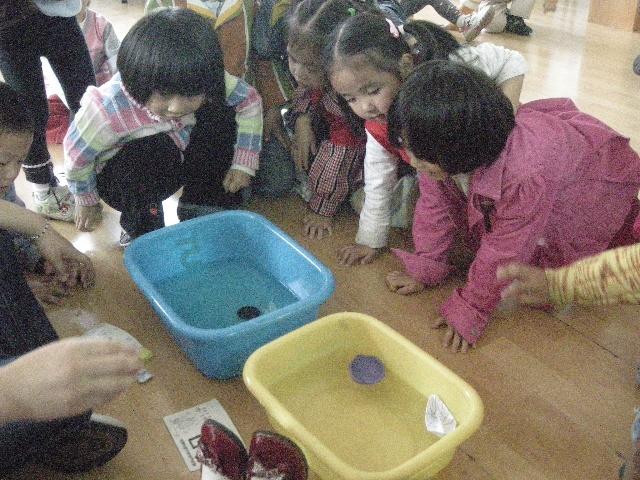 幼儿园-搜狐博客