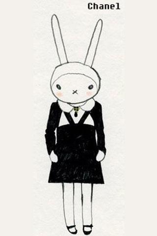 可爱的兔子瞬间变成时尚名模