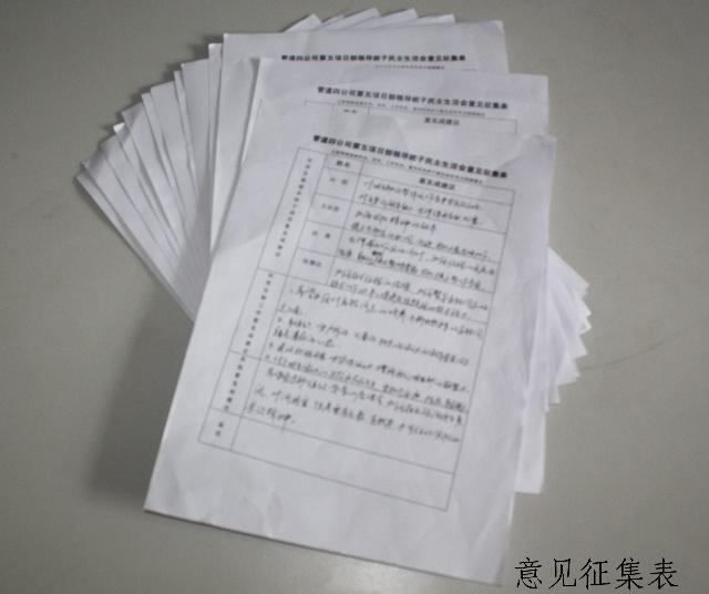 【项目部民主生活会意见】
