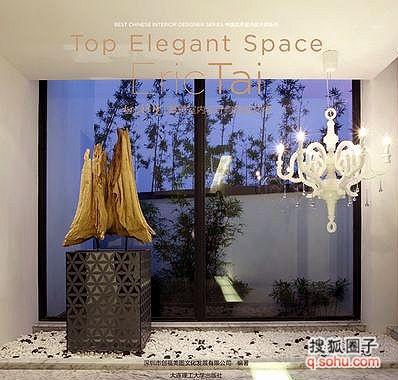 上雅境--戴勇室内设计与陈设艺术》封面-戴勇设计专著第五本 极上雅图片