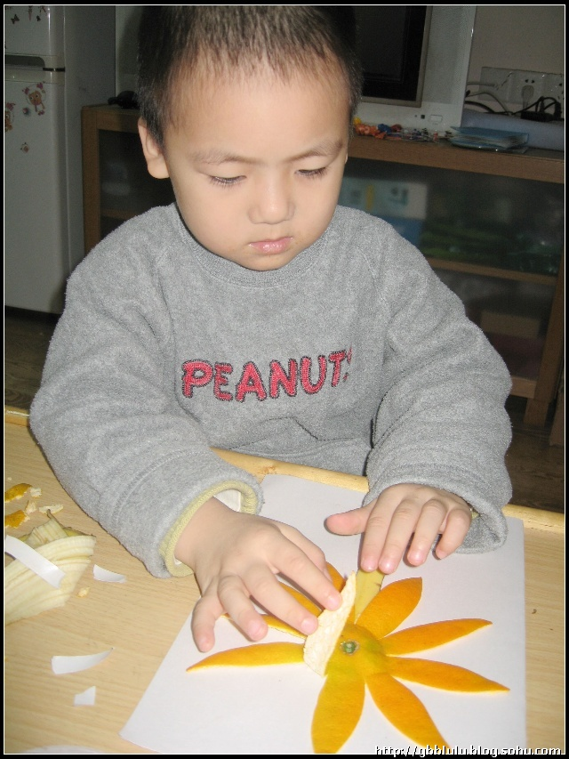 幼儿园功课-水果皮手工