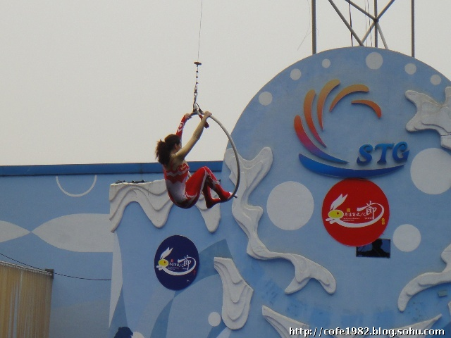 可爱的海狮海豚表演,梦幻的人鱼公主前