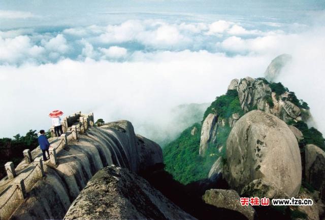 散文】金翠佳莲蕊斗开---安庆风景名胜名之天柱山