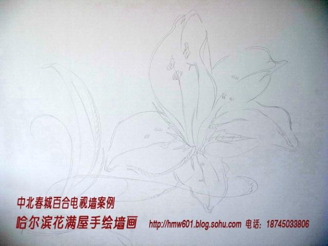 哈尔滨手绘百合电视墙-哈尔滨花满屋手绘墙画工作室